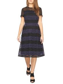 Dorothy Perkins Petite Stripe Dress