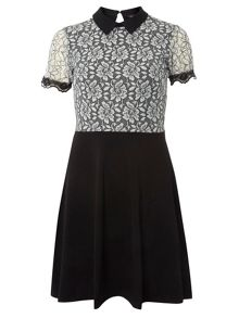 Dorothy Perkins Lace Collar Dress