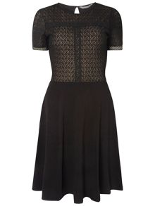 Dorothy Perkins Tall Lace Mixed Dress