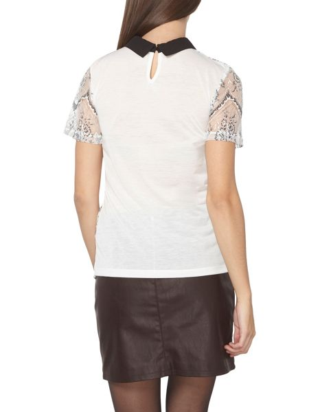 Dorothy Perkins Tall Lace Collar T-Shirt