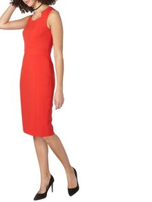 Dorothy Perkins Tall Entry Pencil Dress