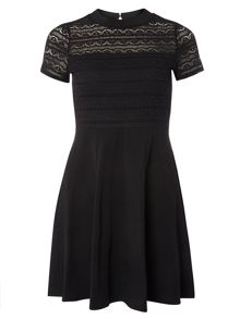 Dorothy Perkins Petite Lace Jersey Dress
