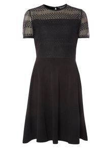 Dorothy Perkins Striped Lace Dress