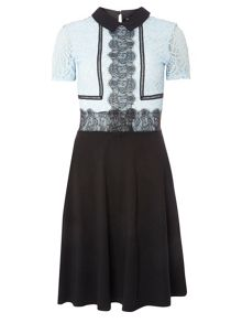 Dorothy Perkins Contrast Lace Dress