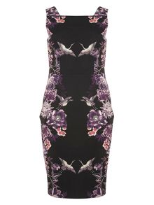 Dorothy Perkins Floral Placement Print Pencil Dress