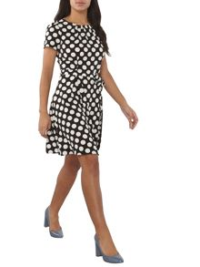 Dorothy Perkins Spot Fit and Flare Dress