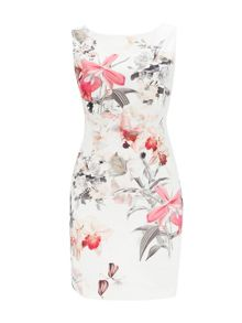 Wallis Petite Floral Shift Dress
