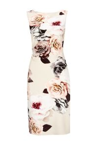 Wallis Rose Print Shift Dress