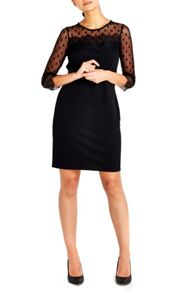 Wallis Petite Black Lace Trim Dress