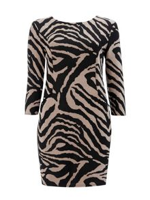 Wallis Animal Print Jacquard Dress