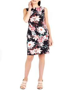 Wallis Floral Cotton Shift Dress