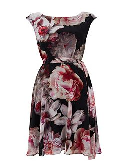 Damson Floral Fit and Flare