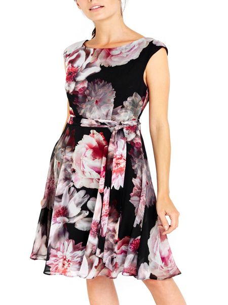 Wallis Damson Floral Fit and Flare