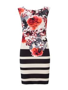 Wallis Floral Stripe Dress
