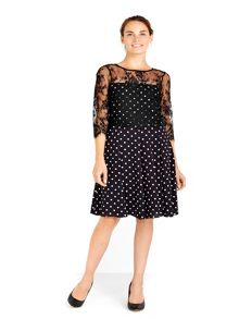 Wallis Lace Overlayer Spot Fit and Flare