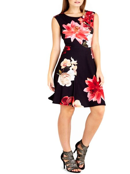 Wallis Petite Floral Fit And Flare Dress