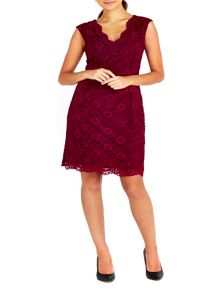 Wallis Petite Lace Dress