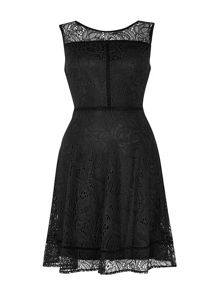 Wallis Black Lace Panel Fit And Flare Dress