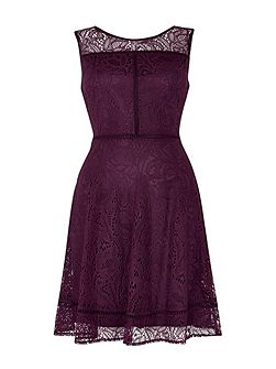 Berry Lace Panel Fit and Flare Dress