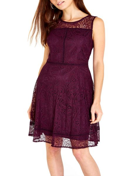 Wallis Berry Lace Panel Fit and Flare Dress