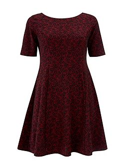 Petite Red Rose Floral Fit And Flare Dress