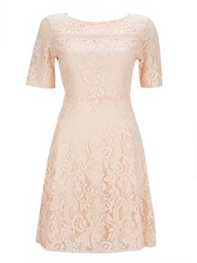 Wallis Blush Floral Lace Fit And Flar
