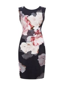 Wallis Petite Blush Floral Dress
