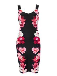 Wallis Pink Posie Floral Dress