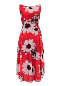 Wallis Daisy Asymetric Dress
