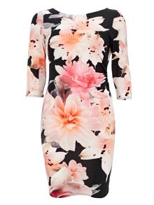 Wallis Apricot Floral Fit & Flare Dress