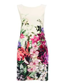 Wallis Trailing Orchid Shift Dress