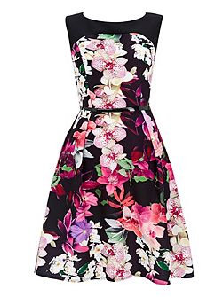 Black Orchid Fit and Flare Dress