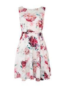 Wallis Pretty Bloom Fit and Flare Dress