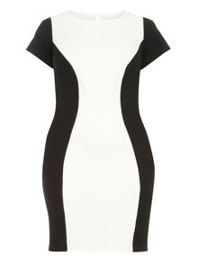 Evans Black Hourglass Colourblock Dress