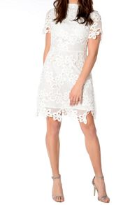 True Decadence Crochet Dress