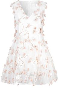 True Decadence 3D Floral Skater Dress