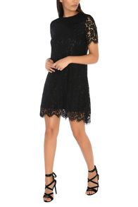 Alice & You Lace Shift Dress