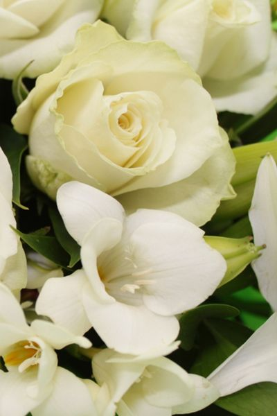 Floric Lily rose & freesia bouquet