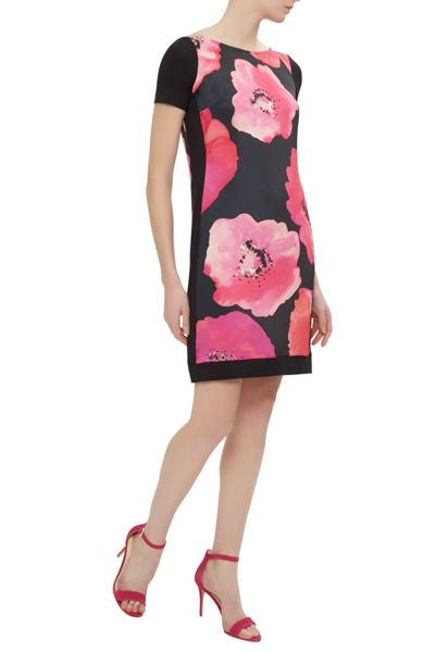 Damsel in a Dress Poppy Floris Dress