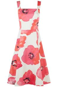 Damsel in a Dress Wild Poppy Dress