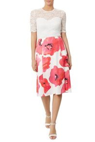 Damsel in a Dress Wild Poppy Skirt