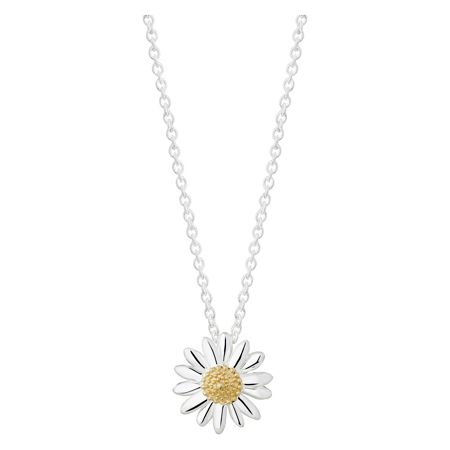 Daisy London N2002 ladies necklace