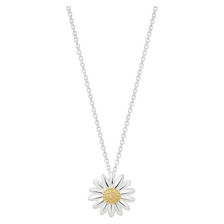 Daisy London N2003 ladies necklace