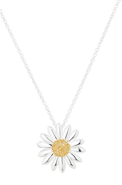Daisy London N2005 ladies necklace
