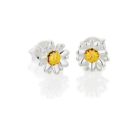 Daisy London E2003 ladies earrings