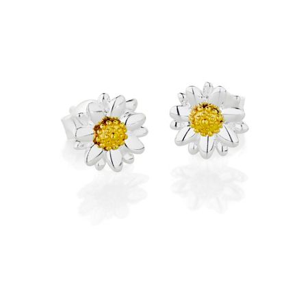 Daisy London E2004 ladies earrings