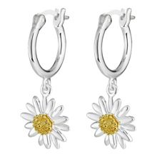 Daisy London E2007 ladies earrings