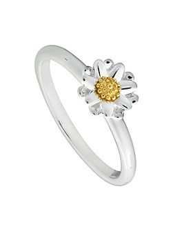 SR511 ladies ring