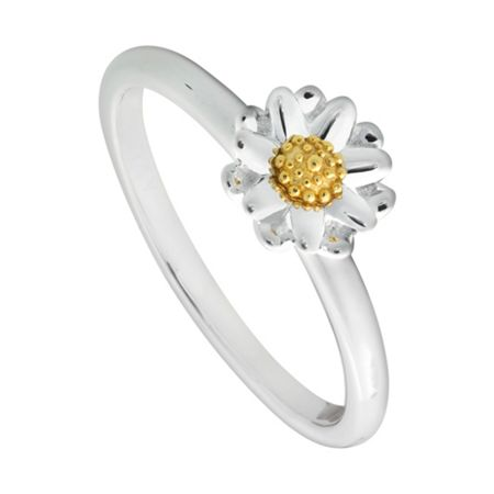 Daisy London SR511 ladies ring