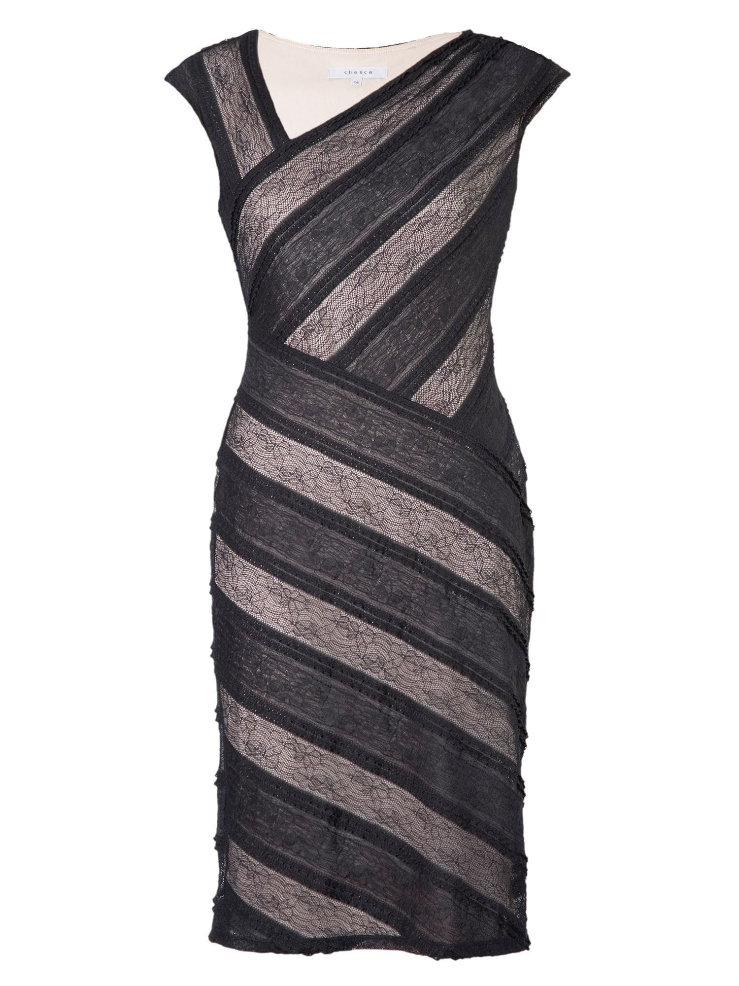 Striped sheer stretch lace dress